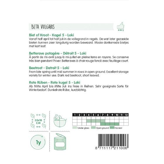 12110 Rode Biet Loki - Betterave Potagère Loki