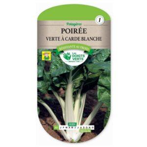 362 Snijbiet Groene met Witte Ribben - Poirée Verte à Cardes Blanches