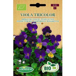 71191 Viola tricolor - Driekleurig Viooltje - Pensée sauvage Bio