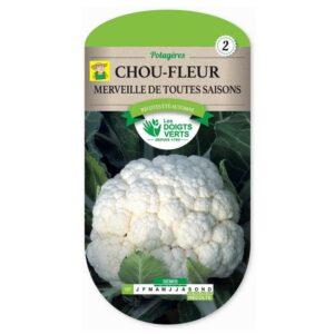 107 Bloemkool Merveille de toutes saisons - Chou-fleur Merveille de toutes saisons