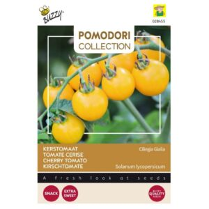 28455 Tomaat Gele Kers, Yellow Cherry - Tomaat Cerise Jaune