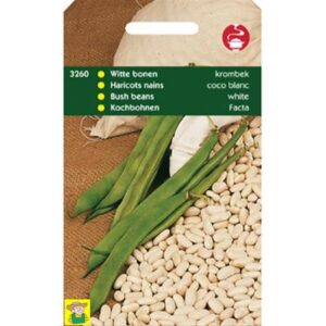 3260 Droogboon Witte Krombek - Haricots nains à écosser Coco Blanc précoce