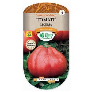 354 Tomaat Liguria - Tomate Liguria