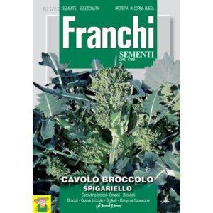4384 Bladbroccoli Spigariello - Chou brocoli Spigariello