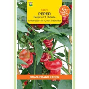 60579 Peper Peppino F1 - Piment Peppino F1