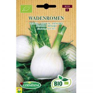 71116 Venkel Wadenromen - Fenouil Wadenromen bio