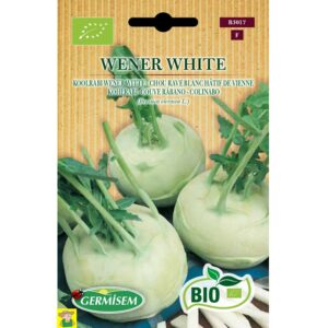 73017 Koolrabi Witte bio - Chou Rave Blanc Bio