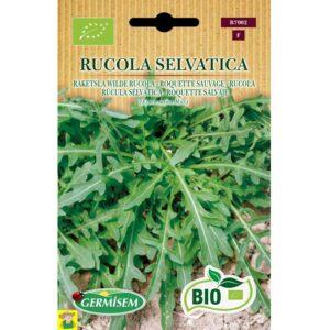 77002 Raketsla Wilde rucola bio - Roquette sauvage bio