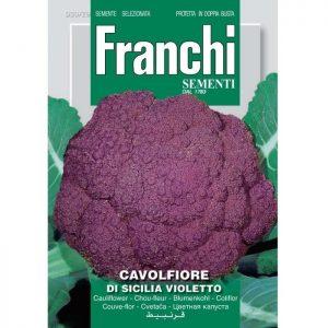 80616 Bloemkool Di Sicilia Violetto - Chou-fleur Di Sicilia Violetto