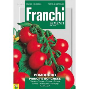 80675 Tomaat Principe Borghese - Tomate Principe Borghese