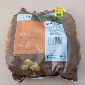 97600 Aardappel Charlotte - Pomme de terre Charlotte 2,5kg