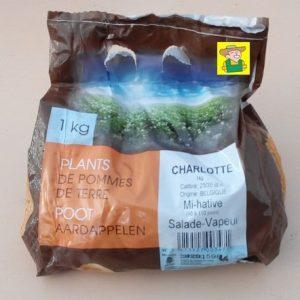 97629 Aardappel Charlotte - Pomme de terre Charlotte 1kg
