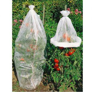 14409 Tomatenhoezen vliesdoek - Housses pour Tomates Voile