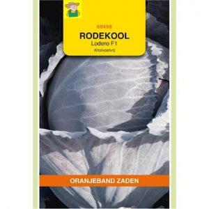 660458 Rode Kool Lodero F1 - Chou Rouge Lodero F1