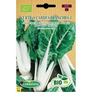 77027 Poirée verte à cardes blanches Bio